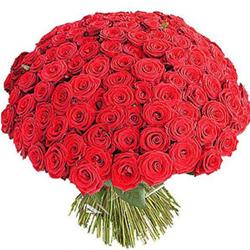 склад-магазин и Цветочный Роза». «Аллея ... Оптовые Цветов Алая